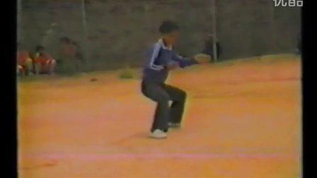 经典重現【陈小星】1985年演示之陈式老架一路欣赏