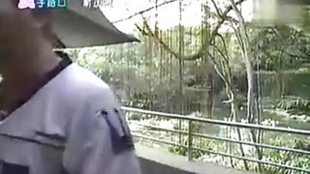 2003-08-24-周日八點檔-食字路口