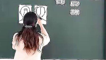 看电影一年级小学一年级美术优质课课堂教学实录选辑