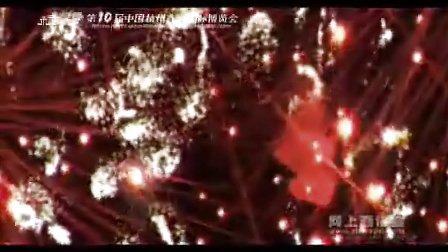 08西博会烟花节宣传片
