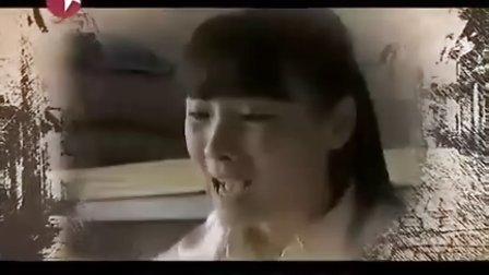 美丽目的地--水韵兴化(东方卫视版)(兴化语文网 录制发布)