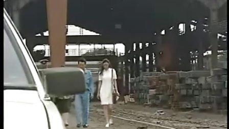 红色康乃馨2000  17