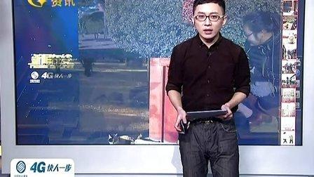 """故宫""""猫保安""""走红网络 140226新闻在线"""