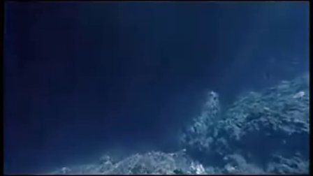 戛纳电影节影片《鱼的故事》7