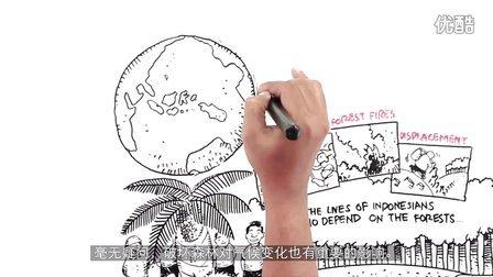"""【视觉动画】画出""""毁林棕榈油""""的真相"""