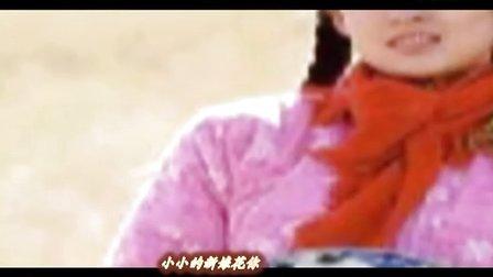 葫芦丝-小小新娘花(章子怡)(重新吹奏 编辑)