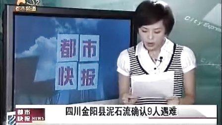四川金阳县泥石流确认9人.