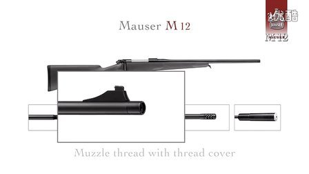 Mauser M 12 with Muzzle Thread