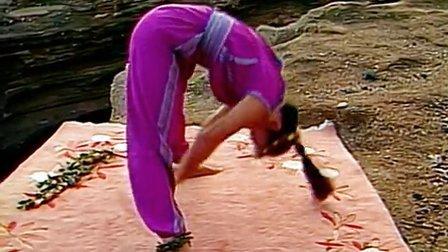 第2集 国际电视系列 蕙兰瑜伽
