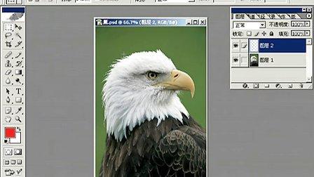 Fhotoshop从头学起视频Photoshop从头学起第22集