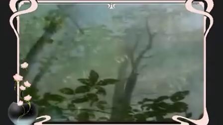 落英系列缤纷映古道之环莺·错误的相遇