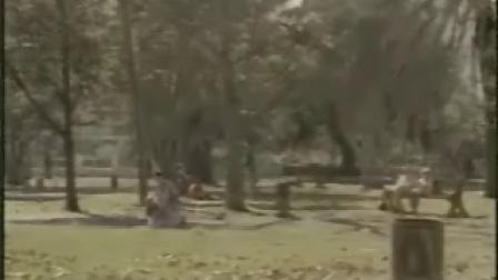 公园里的疯狂男女