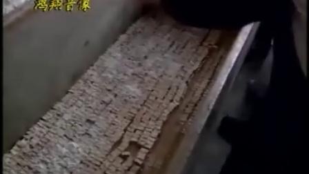 豆腐乳 腐竹 素肠的加工