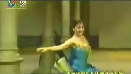 1998年维也纳新年音乐会,指挥:祖宾·梅塔