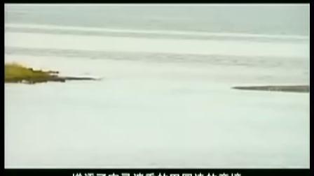 中国自然奇观 北丝路明珠 赛里木湖
