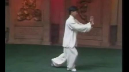 经典重現之【杨军】傳统楊氏103式太极拳全套正面欣赏