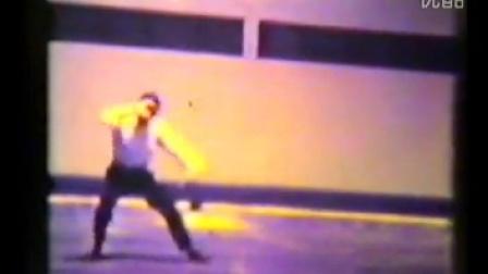 经典重現 一套旧年代之《传统杨式太极快拳》演示片段欣赏