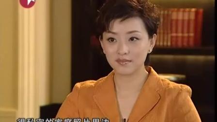 杨澜访谈录 蜕变 张晓刚