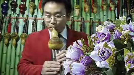 月光下的凤尾竹 音乐佳葫芦丝演奏