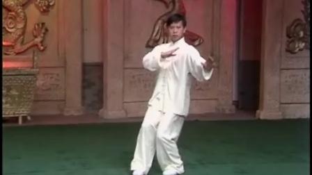 杨振铎传杨式103式太极拳13