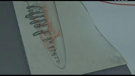 Morphology of a Shark- Water Flow Tank Video 3