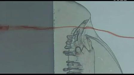 Morphology of a Shark- Water Flow Tank Video 2