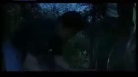 电视剧《为了这一片净土》(17)