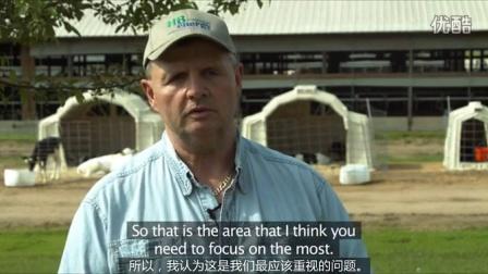 养牛人专访:奶牛一生中的关键时期