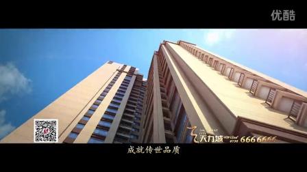 """平江""""天力城""""视频概况"""