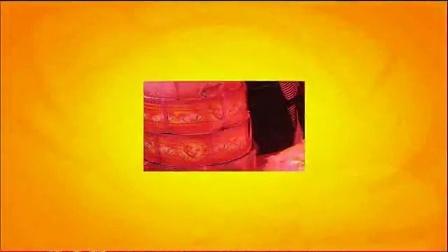 1--寿辰模板 会声会影祝寿做寿生日庆祝片头电子相册模板
