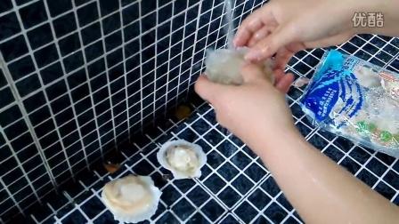 最爱老柴海鲜店,洗扇贝的方法。