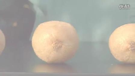 彌猴桃-加利福尼亚猕猴桃视频-英文版