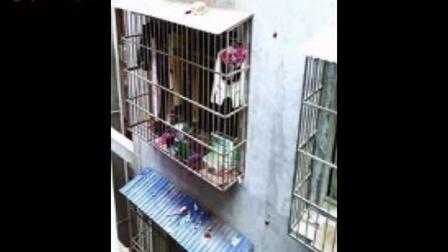 四川广元11岁少年遭生母皮带抽打近两小时身亡