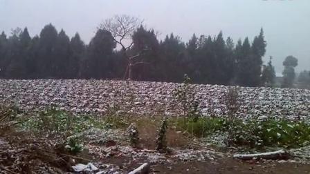 2014年的雪,邱灵摄