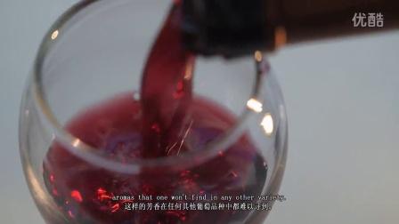 希腊葡萄酒品种希诺马洛XINOMAVRO