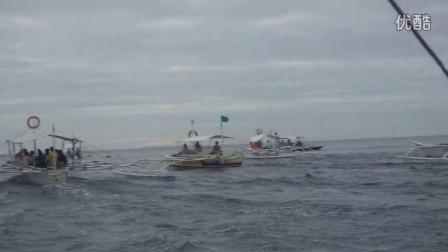 菲律宾海岛追逐海豚