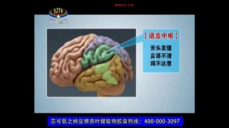 1版-芯可氨-西藏卫视-纳豆银杏叶提取物
