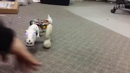 超迷你~超好玩~自平衡玩具机器恐龙