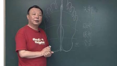 【足疗教程 足疗按摩】杨茗茗-足部保健按摩基础2-反射区分布规律