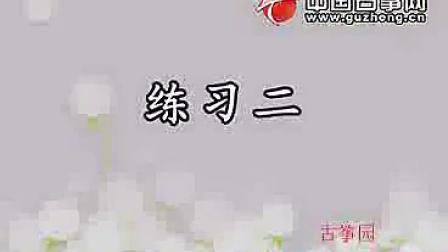 宋心馨古筝教学视频.大撮