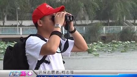 武汉塔子湖——莫让公湖变私湖2013