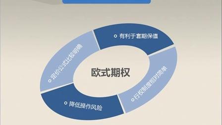 6.新湖期货-走进期权的时代(3)