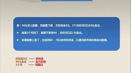 6.新湖期货-走进期权的时代(2)