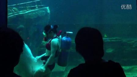 北海海底世界潜水部最后记忆