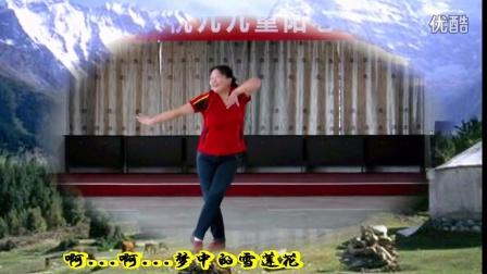 焉耆县 神女广场舞 梦中的雪莲花 附背面示范(1)