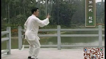 王二平陈式太极剑49式