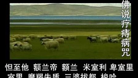 佛说疗痔病咒(海涛法师唱诵)_标清