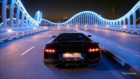 Aventador_LP900-4_SV_Limited_Edition_by_DMC_-_Revs_and_shoot