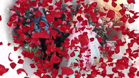 AE039 浪漫玫瑰花瓣AE婚礼模板 心形玫瑰AE预告片头 唯美婚庆模板