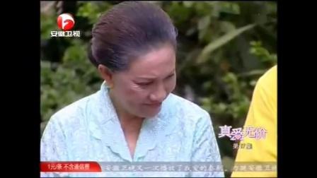 真爱无价国语版全集17中文版安徽卫视